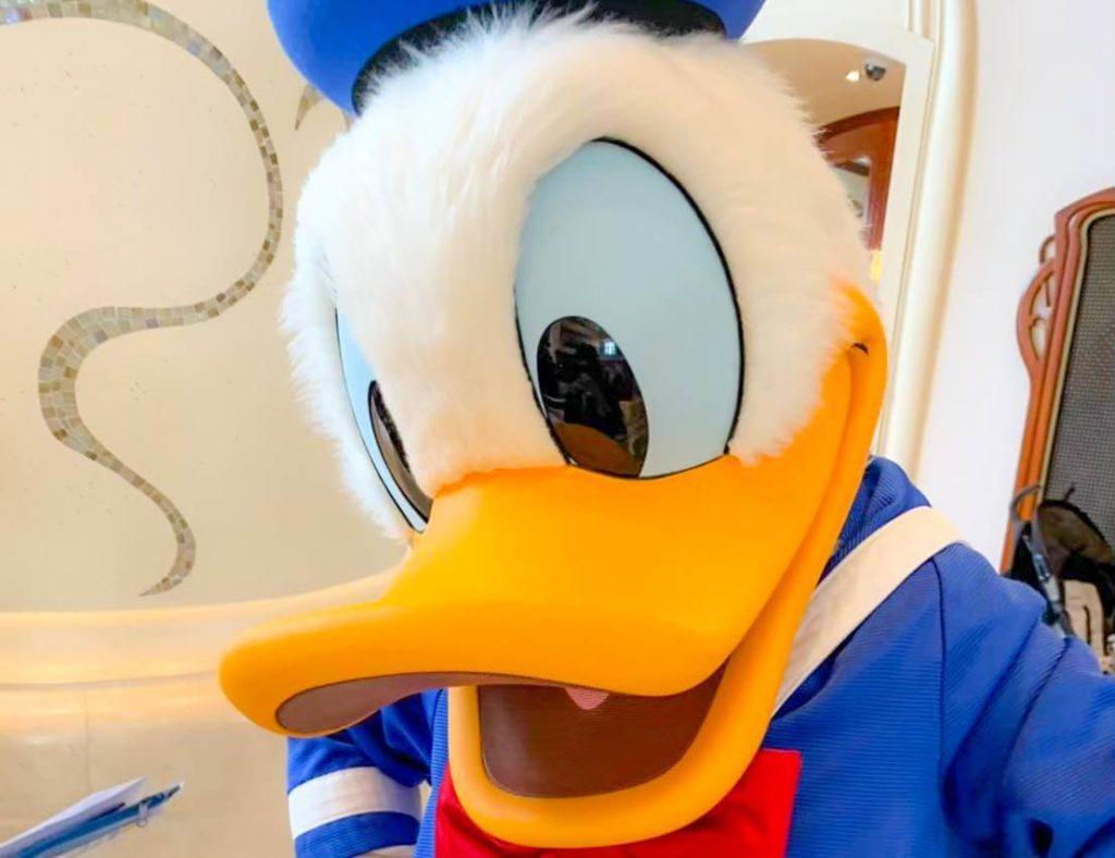 ディズニーで名前が長いキャラクター!ランキング形式で紹介!!ドナルド